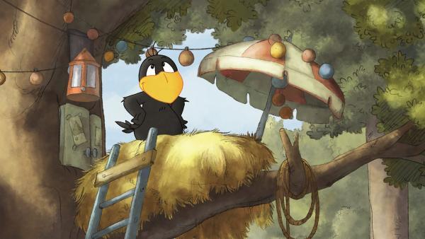 Der kleine Rabe Socke in seinem Nest. | Rechte: SWR/NDR/Akkord Film