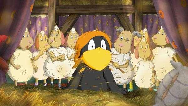 Die Schafe wussten gar nicht, dass man auch in Freiheit leben kann - bis Rabe Socke durchs Dach geflogen kommt | Rechte: SWR