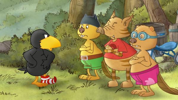 Socke kocht vor Wut: Stulle hat eine Bande. | Rechte: SWR/NDR/Akkord Film