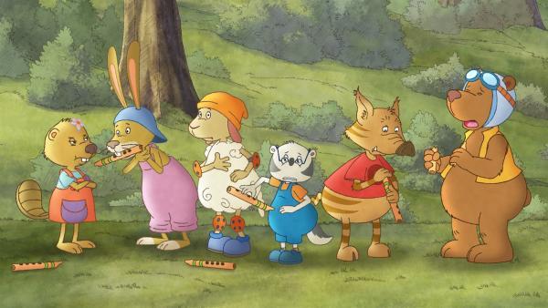 Socke will mit seinen Freunden in einem Musikwettbewerb gegen die Biber antreten.   Rechte: SWR/NDR/Akkord Film