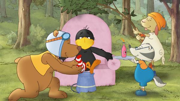 Socke lässt sich von seinen Freunden verwöhnen. | Rechte: SWR/NDR/Akkord Film