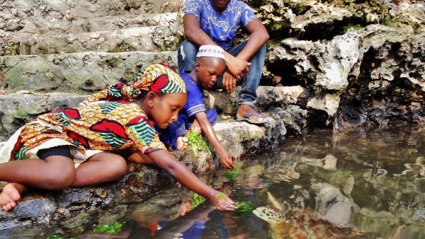 Harabu zeigt Awena und Abduli ihre Lieblingstiere – Meeresschildkröten. | Rechte: SWR/Frank Feustle