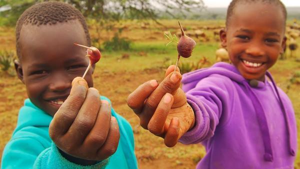 Emily und John naschen Früchte von einem Akazienbusch. | Rechte: SWR/FF-movie.tv Film- und Fernsehproduktion