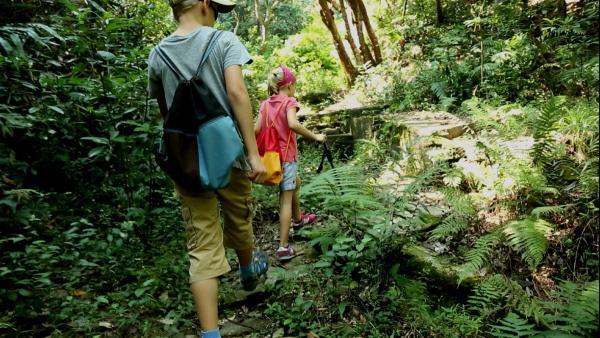 Auf der Suche nach den Affen | Rechte: SWR/Tellux Film