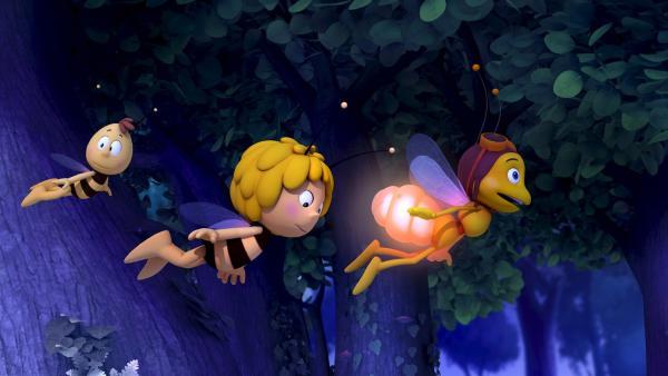 Das Glühwürmchen Glühhannes zeigt Maja den Weg. | Rechte: ZDF/Studio100 Animation