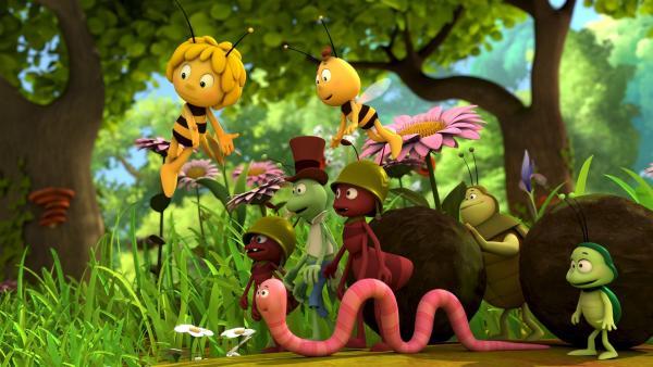 Auf ihre Freunde kann Maja sich verlassen. | Rechte: ZDF/Studio100 Animation