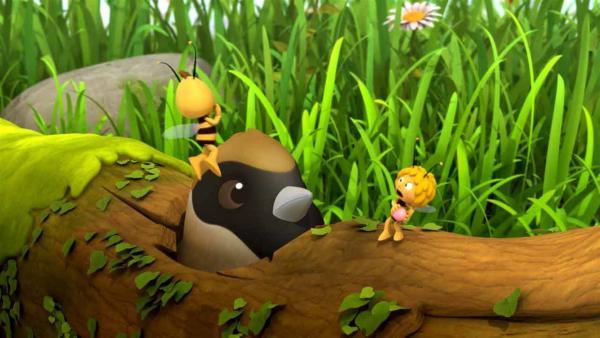 Maja und Willi spielen mit einer Beere, die ein Vogel auch gerne hätte. | Rechte: ZDF/Studio100 Animation