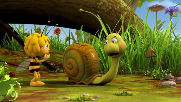 Das Schneckenhaus von Rufus hat einen Knacks.   Rechte: ZDF/Studio100 Animation