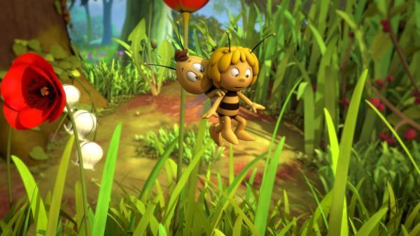Das haben Maja und Willi noch nie gesehen. | Rechte: ZDF/Studio100 Animation