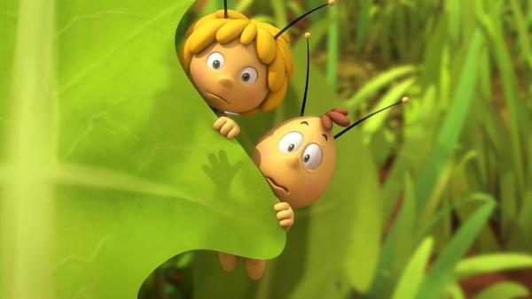 Maja und Willi trauen ihren Bienenaugen nicht. | Rechte: ZDF/Studio100 Animation