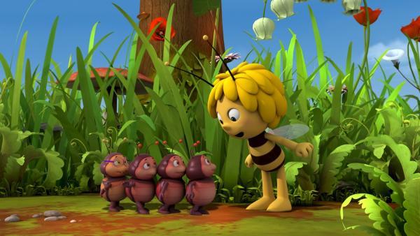 Maja findet die kleinen Feuerkäfer niedlich. | Rechte: ZDF/Studio 100 Animation