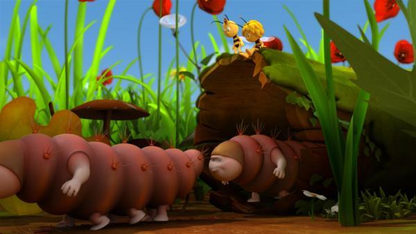 Maja und Willi beobachten die Raupenwanderung. | Rechte: ZDF/Studio100 Animation
