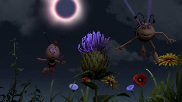 Durch eine Sonnenfinsternis spielen auf der Wiese alle verrückt   Rechte: ZDF/Studio100 Animation