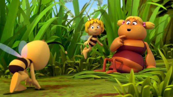 Majas lernt die Feldgrille Irma kennen. | Rechte: ZDF/Studio100 Animation