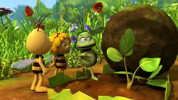 Ob Bens Mistball ein guter Dünger für Majas Blume ist? | Rechte: ZDF/Studio100 Animation
