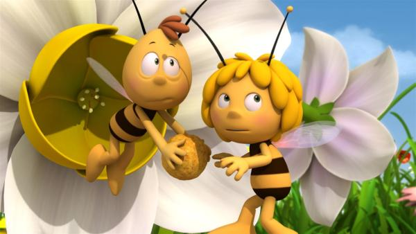 Maja und Willi wollen einen sonnenschönen Pollenball formen. | Rechte: ZDF/Studio100 Animation