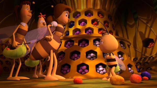 Im Pollenlager duldet Frau Kassandra keine Unordnung.   Rechte: ZDF/Studio100 Animation