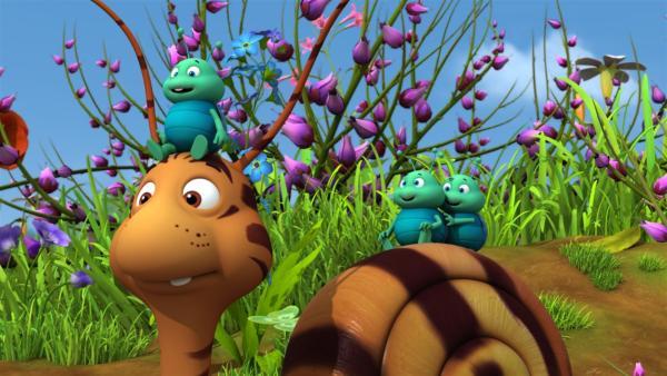 Die Blattläuse fürchten sich überhaupt nicht vor dem getigerten Rufus. | Rechte: ZDF/Studio100 Animation