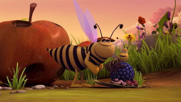 Auch die Wespen mögen das Wiesentheater - vorallem aber das Picknick.   Rechte: ZDF/Studio100 Animation