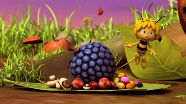 Nach dem Theater lädt Maja alle zum Picknick ein.   Rechte: ZDF/Studio100 Animation