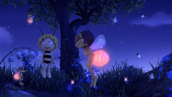 Dank Majas Freunden wird selbst die dunkelste Nacht hell erleuchtet. | Rechte: ZDF/Studio100 Animation