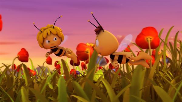 Maja und Willi sollen die Königin noch vor Sonnenuntergang nach Hause bringen. | Rechte: ZDF/Studio100 Animation