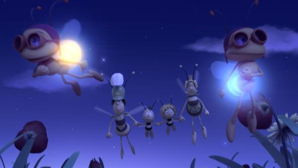 Maja bringt alle sicher nach Hause. | Rechte: ZDF/Studio100 Animation