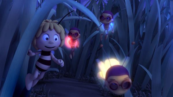 Maja liebt das Licht der Glühwürmchen. | Rechte: ZDF/Studio100 Animation