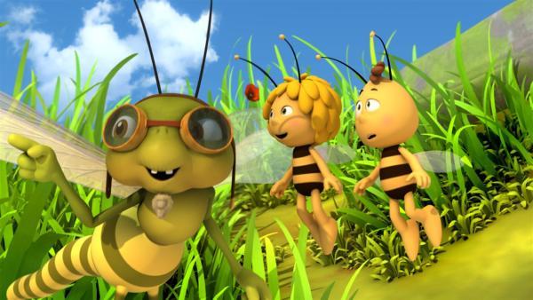 Die Libelle Otto bringt Maja und Willi das Rückwärtsfliegen bei. | Rechte: ZDF/Studio100 Animation