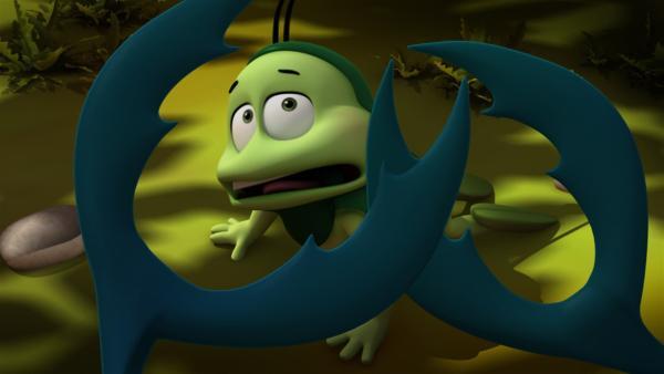 Ben fürchtet sich - bitte nicht zwicken! | Rechte: ZDF/Studio100 Animation