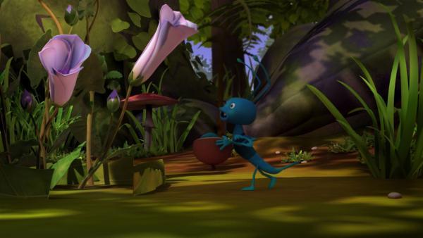 Der Ohrenkneifer Igor ist nachts aktiv. | Rechte: ZDF/Studio100 Animation