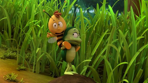 Willi und Ben fürchten sich vor dem Ohrenkneifer. | Rechte: ZDF/Studio100 Animation
