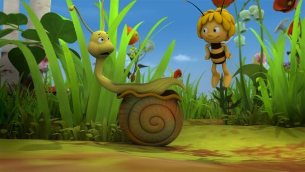 Rufus will Maja von ihrer Ãœberraschung ablenken. | Rechte: ZDF/Studio100 Animation