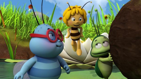 Walter und Ben wollen Maja etwas Besonderes schenken. | Rechte: ZDF/Studio100 Animation