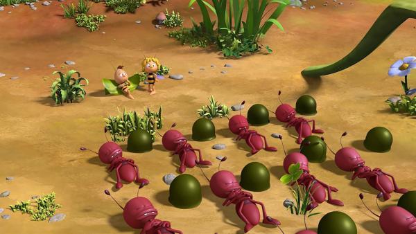 Die Ameisen lernen Nickerchen machen. | Rechte: ZDF/2017/Studio 100 Animation