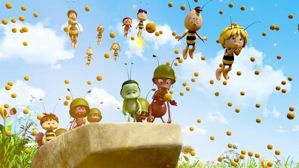 Alle wollen zur Glücksblume. | Rechte: ZDF/2017/Studio 100 Animation