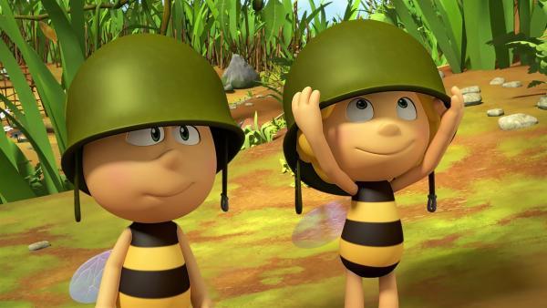 Willi und Maja müssen zu den Ameisen, um kämpfen zu lernen.   Rechte: ZDF/2017/Studio 100 Animatio
