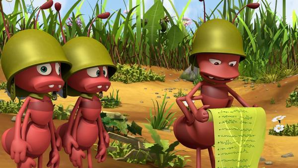 Paul, der Ameisenoberst, liest sehr langsam alle Pflichten der Ameisen vor. | Rechte: ZDF/2017/Studio 100 Animatio