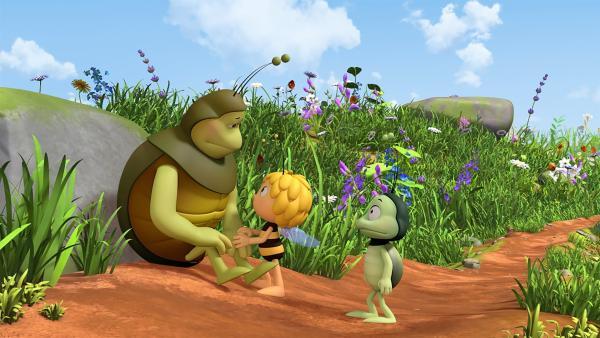 Kurt erzählt Maja und Ben von seiner Mistball-Aversion. | Rechte: ZDF/2017/Studio 100 Animatio