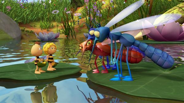 Drei Mücken beanspruchen den Teich für sich.<br/>   Rechte: ZDF/2017/Studio 100 Animatio