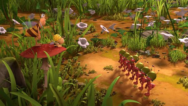 Die Ameisen marschieren in Reih und Glied. | Rechte: ZDF/2017/Studio 100 Animation