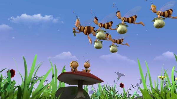 Die Bienen fliegen sehr diszipliniert. | Rechte: ZDF/2017/Studio 100 Animation