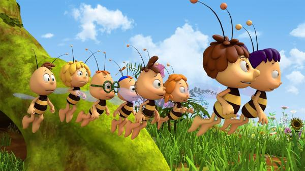 Anstatt ihr Diplom zu schreiben, machen die Bienen einen Wiesenausflug. | Rechte: ZDF/2017/Studio 100 Animation