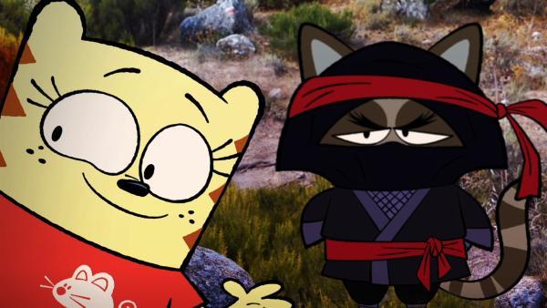 Moon trifft einen echten Ninja. | Rechte: BR/2017 Cottonwood Media