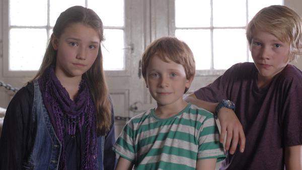 Nina (Carolin Garnier), Henri (Sammy O'Leary) und Max (Bruno Alexander) schmieden im Hauptquartier einen Plan. | Rechte: NDR/Romano Ruhnau