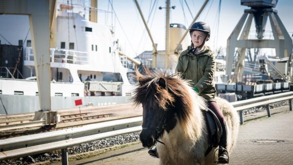 Befreit! Pinja (Sina Michel) reitet durch den Hamburger Hafen in die Freiheit. | Rechte: NDR/Boris Laewen