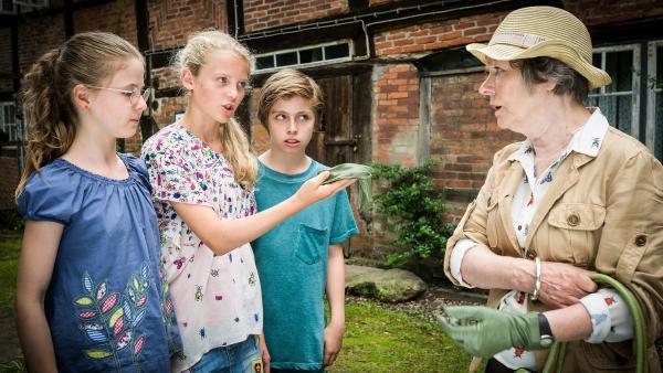 Pinaj (Sina Michel, Stella (Zoë Malia Moon) und Till (Otto von Grevenmoor) konfrontieren Marte Pappel (Monika Lennartz) mit einem handfesten Beweisstück... | Rechte: NDR/Boris Laewen