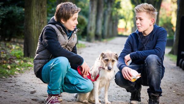 Till (Otto von Grevenmoor, links) kann mit Hündin Socke das Vertrauen von Tom (Vincent Grages) gewinnen.   Rechte: NDR/Boris Laewen