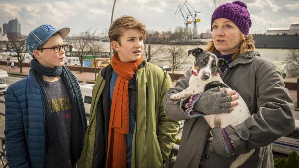 Benny (Ruben Storck, links) und Johannes (Luke Matt Röntgen, Mitte) reden Klartext mit Autorin Anke Clausen (Nina Petri). | Rechte: NDR/Boris Laewen
