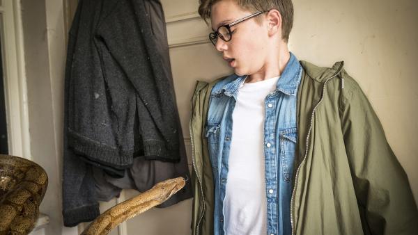 Benny (Ruben Storck) ist starr vor Schreck, als sich in der Zoohandlung eine Schlange direkt auf ihn zu bewegt. | Rechte: NDR/Boris Laewen